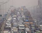 Không khí ngoài trời ô nhiễm làm giảm hiệu quả công việc của nhân viên văn phòng?