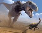 Hai chi trước nhỏ xíu của T-rex có lẽ không vô dụng như chúng ta vẫn nghĩ