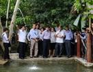 Đà Nẵng: Chấn chỉnh hàng loạt khu du lịch không phép tại Hải Vân