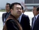 Anh trai nhà lãnh đạo Kim Jong-un gặp đặc vụ Mỹ trước khi bị sát hại?