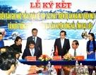 Tập đoàn Hàn Quốc sẽ xây nhà máy điện mặt trời triệu USD tại Bạc Liêu