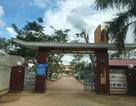 Bộ GD-ĐT yêu cầu báo cáo vụ kỷ luật, điều chuyển công tác hiệu trưởng để xảy ra lạm thu tại Quảng Bình