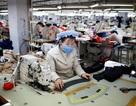 Hàn Quốc: Đẩy mạnh chuyển đổi lao động phi chính thức sang chính thức
