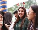 """""""Bông hồng lai"""" gây chú ý tại hội chợ Giáng sinh trường Lomonoxop"""