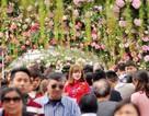 """Hà Nội """"tuýt còi"""" tình trạng lộn xộn, gây bức xúc ở Lễ hội hoa hồng"""