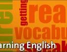 Đố bạn làm đúng trắc nghiệm tiếng Anh dành cho học sinh 11 tuổi
