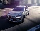 Lexus NX 300 giá khởi điểm từ 2,43 tỉ đồng