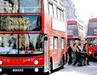 London, Paris, Singapore đương đầu với ùn tắc giao thông như thế nào?