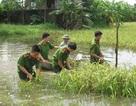 Hà Nam: Nông dân thiệt hại nặng sau trận mưa lũ lịch sử