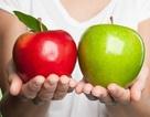 Nghiên cứu cho thấy 20% tổng lương thực của thế giới bị lãng phí