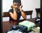 Công an 2 tỉnh Nghệ An, Hà Tĩnh phối hợp bắt tội phạm ma túy