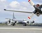 Australia điều máy bay trinh sát hỗ trợ Philippines chống phiến quân