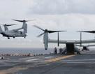 Trực thăng quân sự Mỹ rơi ở ngoài khơi Australia, 3 người nghi thiệt mạng