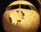 Máy bay Mỹ móp đầu vì nghi va chạm với chim ở độ cao 9.000m