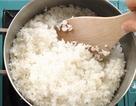 Những bí quyết nấu cơm ngon bà nội trợ cần biết
