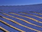 Đắk Nông xây dựng nhà máy điện mặt trời gần 1300 tỷ đồng