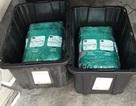 Đặt mua hộp nhựa trên Amazon, nhận được gần... 30kg cần sa