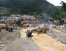 BIDV dành gần 1,6 tỷ đồng hỗ trợ 3 tỉnh miền núi phía Bắc chịu thiệt hại lũ lụt