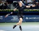 Dubai Open: Murray gặp Verdasco ở chung kết
