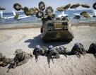 Mỹ - Hàn tập trận tấn công giả định căn cứ Triều Tiên