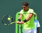 Miami Open: Nadal vào chung kết, Federer may mắn thoát hiểm