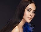 Nam Em trở thành Giám đốc Quốc gia chọn ứng viên thi Hoa hậu Trái đất