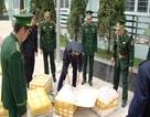 Phát hiện nửa tấn nầm lợn nhập lậu từ Trung Quốc
