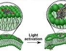 Máy khoan nano siêu nhỏ diệt tế bào ung thư chỉ trong 60 giây
