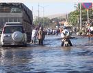 Triều cường dâng bất thường, cửa ngõ phía Tây Sài Gòn tê liệt