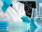 Các nhà khoa học Nga tạo ra hạt nano tiêu diệt các tế bào ung thư