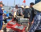 Lệnh cấm đánh bắt của Trung Quốc không có giá trị trong vùng biển chủ quyền Việt Nam