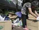 """""""Những bà già thùng carton"""" tại Hong Kong"""