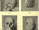 Phát hiện bằng chứng cho thấy pharaoh Ai Cập là một người khổng lồ