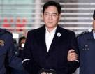 Người thừa kế Samsung bị đề nghị nâng án, có thể lãnh 12 năm tù