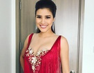 Người đẹp Nguyễn Thị Thành sẽ bị cấm diễn trên toàn quốc vì cố tình thi chui