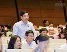 Cho thôi nhiệm vụ đại biểu Quốc hội chuyên trách với ông Nguyễn Văn Cảnh
