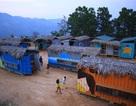 Quảng Ngãi:  Độc đáo nhà bán trú container cho học sinh vùng cao