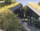 Video: 10 tòa nhà có kiến trúc độc đáo khiến bạn sửng sốt