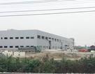 Ninh Bình: Phạt chủ đầu cụm công nghiệp Cầu Yên 400 triệu đồng vì trốn ĐTM!
