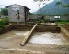 Xả thải ra môi trường, nhà máy tinh bột sắn bị xử phạt 310 triệu đồng