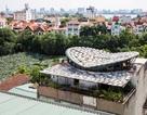 Độc đáo ngôi nhà lợp mái bằng... 500 cái mẹt ở Hà Nội