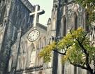 Chiêm ngưỡng vẻ đẹp những nhà thờ nổi tiếng nhất Việt Nam