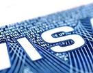 Mỹ ngừng xét duyệt nhanh thị thực cho lao động nước ngoài