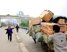 """""""Nuôi"""" 2,8 triệu công chức và vẫn nhập cả tăm tre, ô mai từ Trung Quốc"""