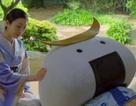 """Quảng cáo du lịch """"khêu gợi"""" của Nhật Bản gây tranh cãi"""