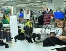 Thanh Hóa: 3.046 doanh nghiệp nợ hơn 357 tỉ đồng đóng BHXH
