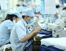 Hơn 2.000 tỉ đồng nợ BHXH khó đòi, 193.000 lao động bị ảnh hưởng