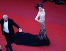 Công ty tổ chức sự kiện tại LHP Cannes lên tiếng về tấm panel của Lý Nhã Kỳ