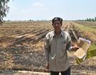 Phó Thủ tướng yêu cầu giải quyết dứt điểm vụ thu hồi đất của 349 hộ dân!