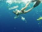 Trải nghiệm bơi trong đại dương rác và lời cảnh tỉnh về ý thức của con người